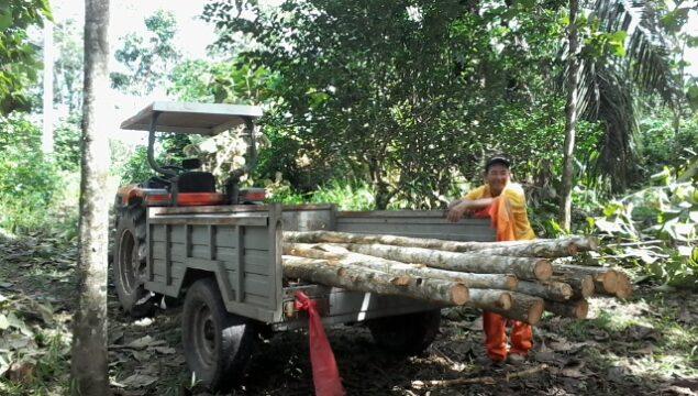 Transporte de Productos Forestales